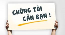 Công ty CP Đầu tư Phát triển Xây dựng Việt Nam tuyển dụng nhân viên chính thức toàn quốc